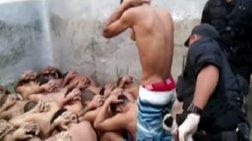 Σοκ από τα φρικτά βασανιστήρια σε φυλακές στη Βραζιλία [Σκληρές εικόνες]