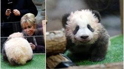 mprizit-makron-i-prwti-kuria-tis-gallias-baftise-ena-glukutato-panda