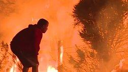 Καλιφόρνια: Έπεσε στη φωτιά για να σώσει ένα ...κουνέλι (ΒΙΝΤΕΟ)