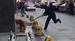 Αστυνομικός χτύπησε μέχρι θανάτου σκυλί  - Βίντεο