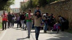 Ομόφωνη απόφαση του ΔΣ στη Χίο: Ανεπιθύμητα τα μέλη της Χρυσής Αυγής