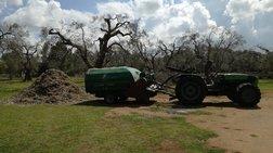 Ενέργεια από κλαδέματα και αγροτική βιομάζα- Αναξιοποίητοι 3 εκατ. τόνοι