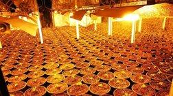 Υδροπονική... χασισοφυτεία σε  πολυτελή κατοικία στο Λαγονήσι