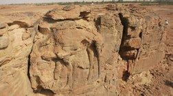 Αρχαιολόγοι ανακάλυψαν ...καμήλες ηλικίας 2.000 ετών
