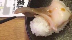 Η περίεργη στιγμή που ένα πιάτο sushi σε... χαιρετάει [απίστευτο βίντεο]