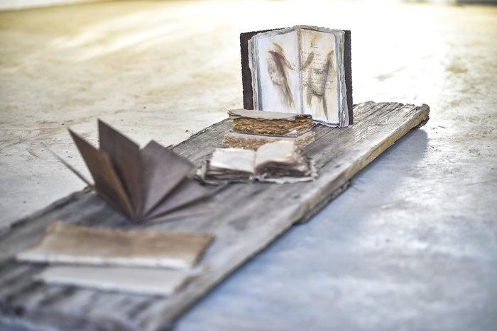 Εργα της γλύπτριας Α.Αθανασιάδη εγκαινιάζουν νέα πτέρυγα της Γενναδείου - εικόνα 2