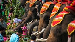 h-tailandi-giortazei-tin-imera-tou-elefanta