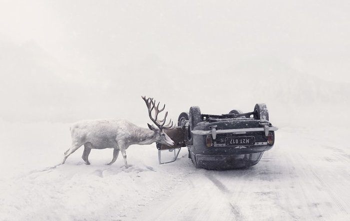 Open enhanced and Czech Republic national award winner: Martin Stranka