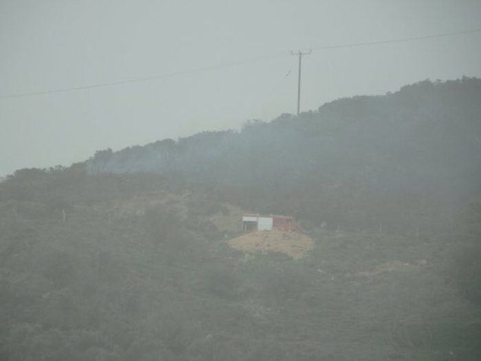 Μάχη με τις φλόγες στην Κρήτη: Πάνω από 20 πυρκαγιές-εκκενώθηκε οικισμός - εικόνα 3