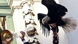 """""""Απέδρασε"""" ο αετός - μασκότ της Μπενφίκα πριν το ματς"""
