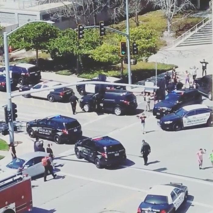Ποια ήταν η ακτιβίστρια που επιτέθηκε στα γραφεία του YouTube [φωτό] - εικόνα 6