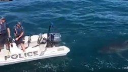 Ο ...Νώε δεν επέτρεψε να γίνει αλκοτέστ σε σκάφος! (βίντεο)