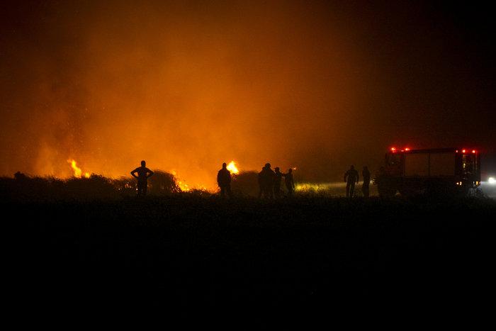 Συνεχίζεται η μάχη με τις φλόγες στην Ηλεία με 24 οχήματα και 2 αεροπλάνα - εικόνα 3