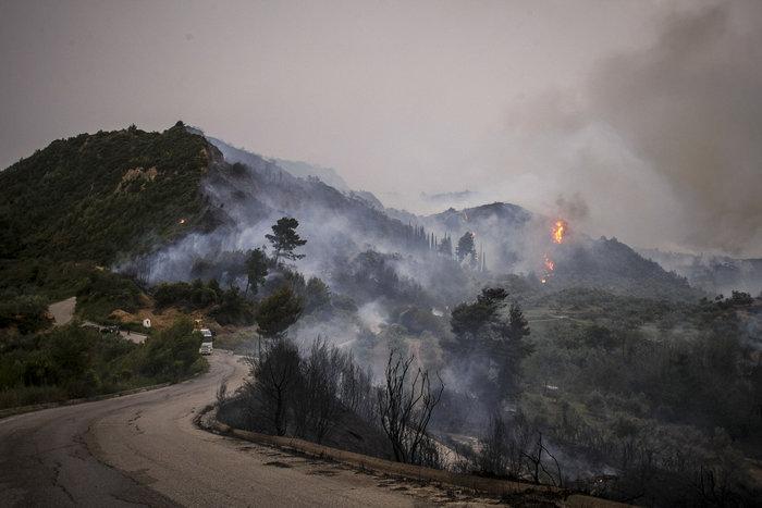 Συνεχίζεται η μάχη με τις φλόγες στην Ηλεία με 24 οχήματα και 2 αεροπλάνα - εικόνα 5