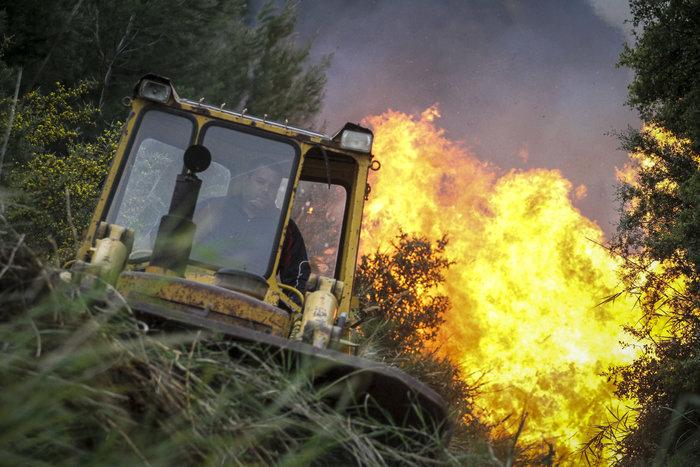 Συνεχίζεται η μάχη με τις φλόγες στην Ηλεία με 24 οχήματα και 2 αεροπλάνα - εικόνα 7