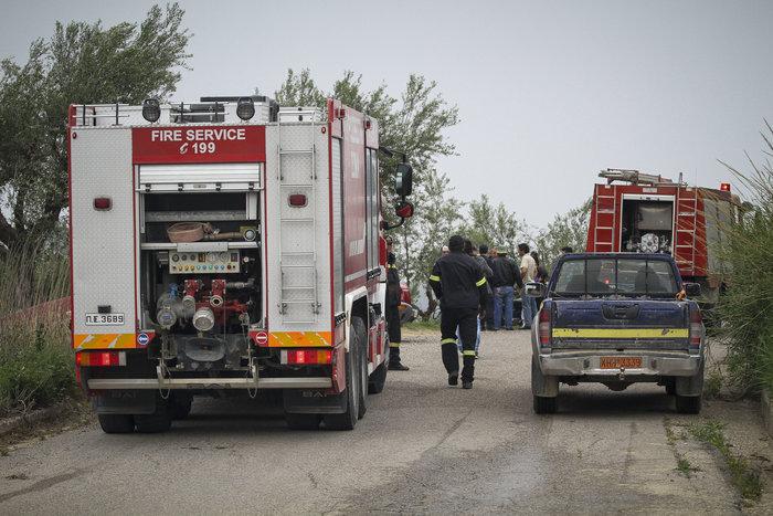 Συνεχίζεται η μάχη με τις φλόγες στην Ηλεία με 24 οχήματα και 2 αεροπλάνα - εικόνα 8