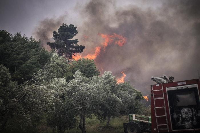 Συνεχίζεται η μάχη με τις φλόγες στην Ηλεία με 24 οχήματα και 2 αεροπλάνα - εικόνα 10
