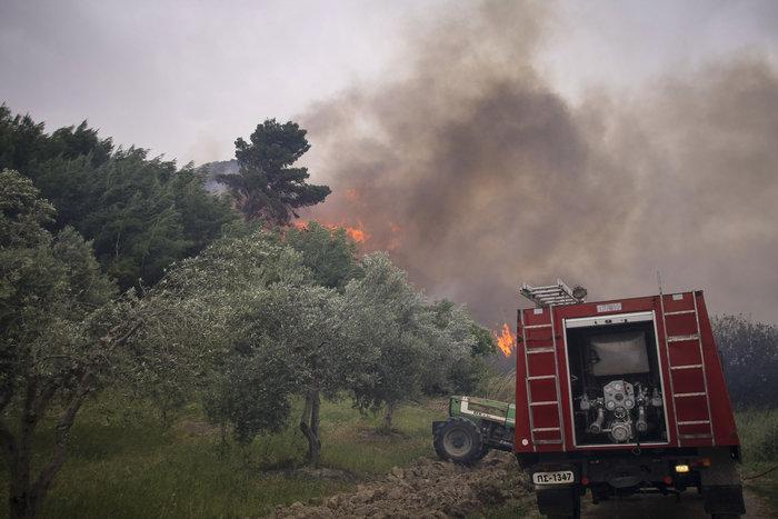 Δεν υπάρχουν ενεργά μέτωπα στην Ηλεία, μόνο αναζωπυρώσεις - εικόνα 2