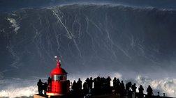 gigantio-kuma-24-metrwn-espase-ola-ta-rekor-sti-nea-zilandia