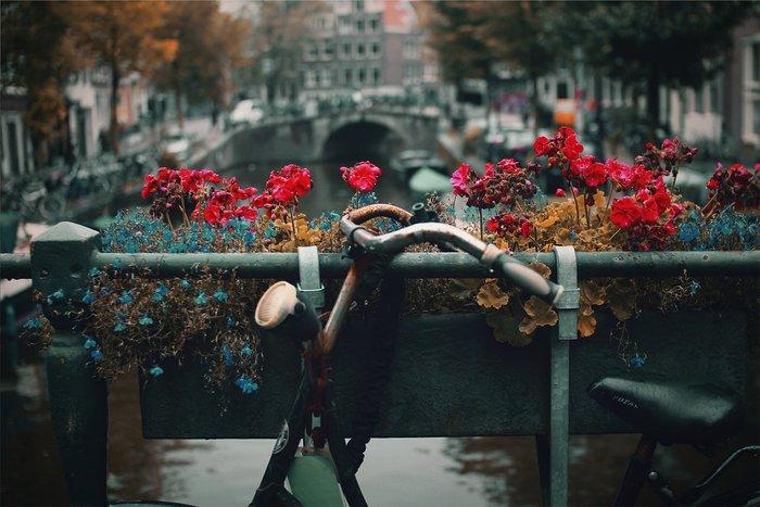 Eνα Σαββατοκύριακο στο Άμστερνταμ - εικόνα 10
