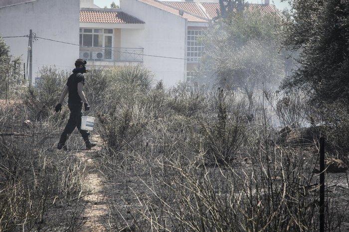Σε εξέλιξη φωτιά στο άλσος Συγγρού: Τραυματίστηκε εθελοντής πυροσβέστης