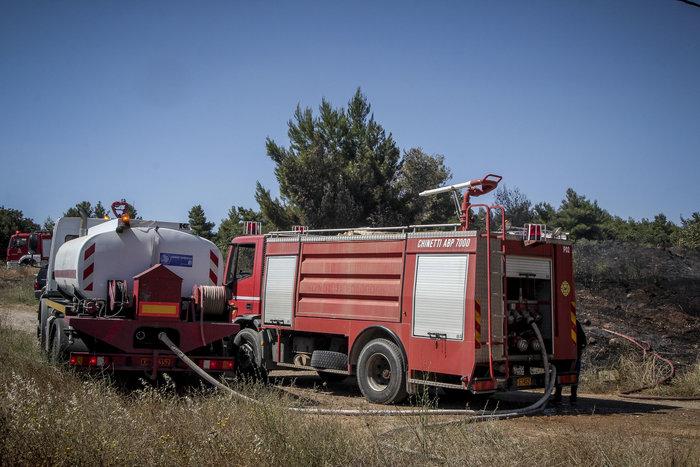 Σε εξέλιξη φωτιά στο άλσος Συγγρού: Τραυματίστηκε εθελοντής πυροσβέστης - εικόνα 3