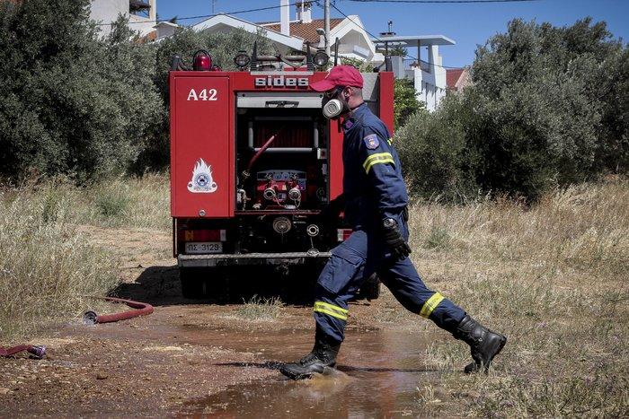 Σε εξέλιξη φωτιά στο άλσος Συγγρού: Τραυματίστηκε εθελοντής πυροσβέστης - εικόνα 4