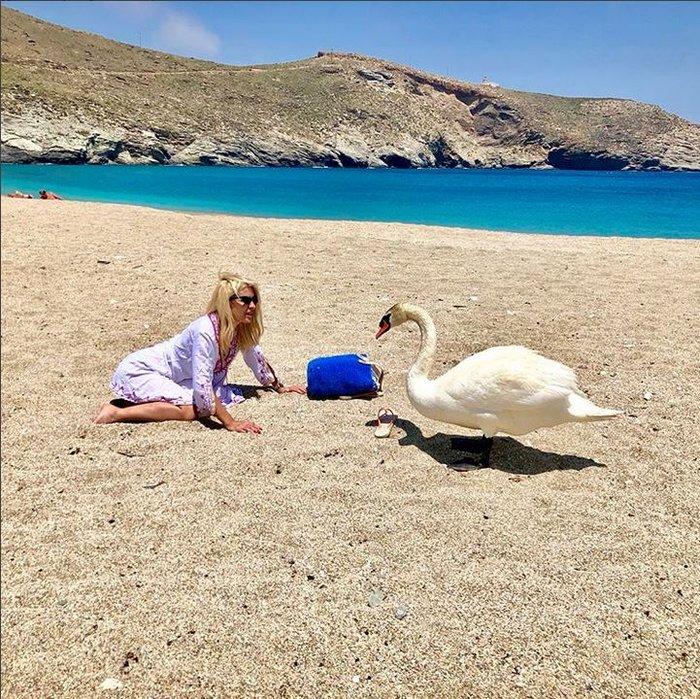 Ελένη Μενεγάκη: Πήγε για μπάνιο και δεν φαντάζεστε τι βρήκε στην παραλία - εικόνα 2