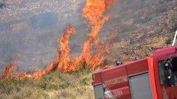 Υπό έλεγχο οι δασικές πυρκαγιές στη Χαλκιδική