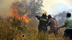 Φωτιά σε δασική έκταση κοντά στη Μονή Χιλανδαρίου στο Άγ. Όρος