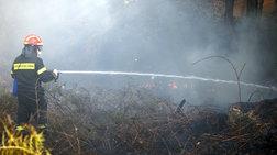 Υπό έλεγχο η πυρκαγιά σε δασική έκταση στο Άγιο Όρος