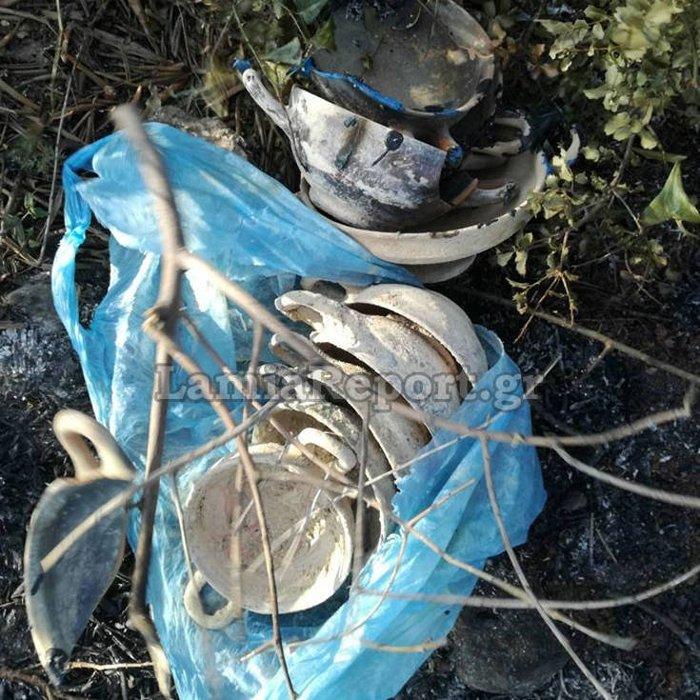 Λιβανάτες: Πυροσβέστες βρήκαν μεγάλο αριθμο αρχαίων κρυμμένα σε ... θάμνους - εικόνα 2