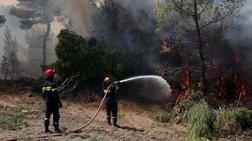 Υπό πλήρη έλεγχο η φωτιά στην Αλόννησο, εκκενώθηκε ξενοδοχείο