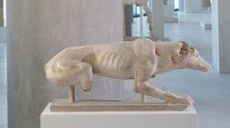 kalokairi-parea-me-ta-zwa-tou-mouseiou-akropolis