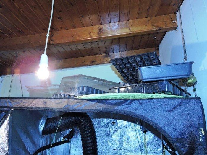Πλήρως εξοπλισμένη υδροπονική καλλιέργεια κάνναβης σε σπίτι - Εικόνες - εικόνα 5