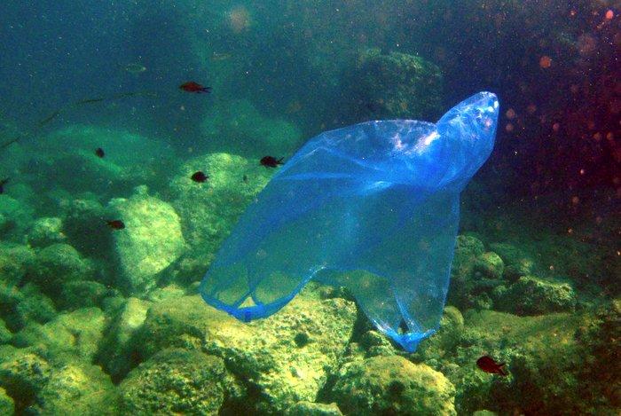 Η Μεσόγειος κινδυνεύει να μετατραπεί σε μια «πλαστική θάλασσα» - εικόνα 2