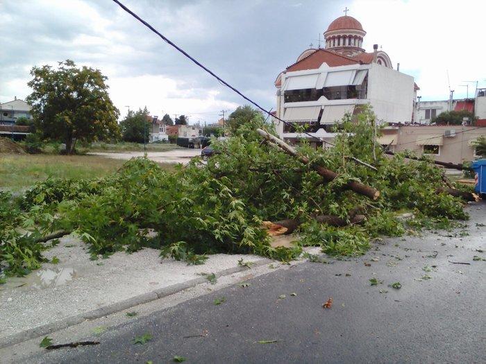 Μπουρίνι στη Λάρισα: Κολώνα της ΔΕΗ έπεσε σε αυτοκίνητο - Εικόνες