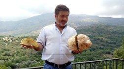 Μανιτάρι 4 κιλών εντοπίστηκε για πρώτη φορά στην Κρήτη