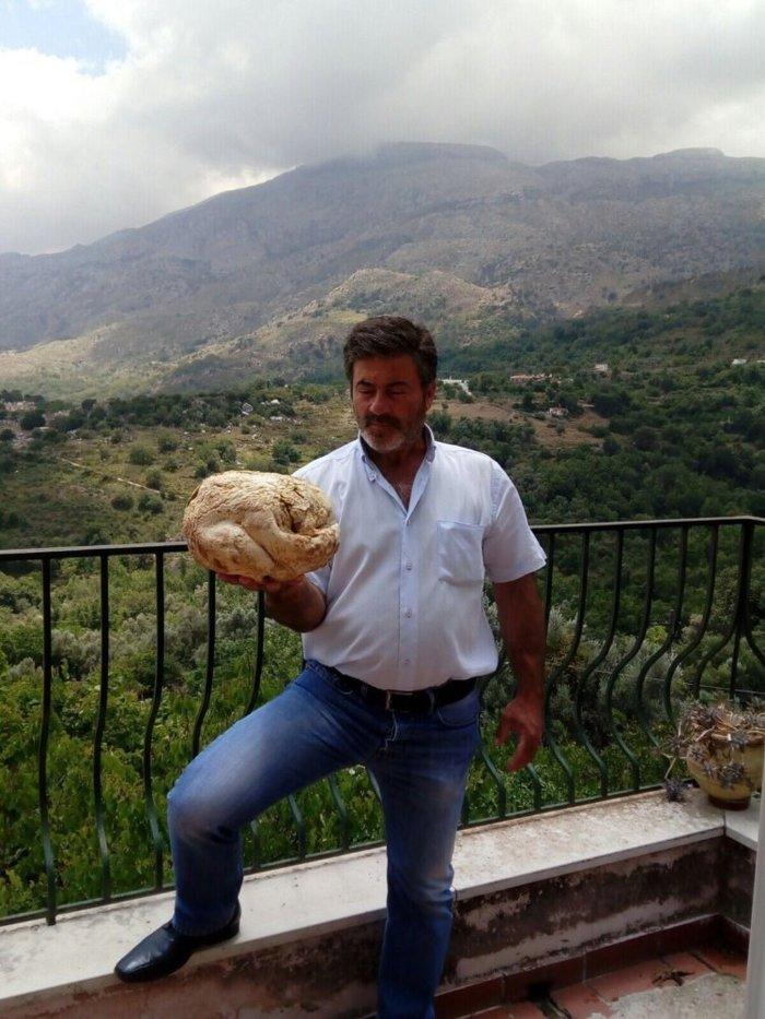 Μανιτάρι 4 κιλών εντοπίστηκε για πρώτη φορά στην Κρήτη - εικόνα 2