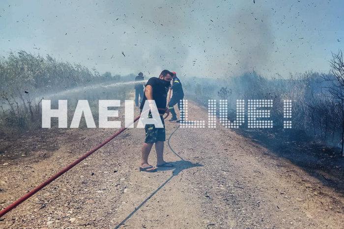 Πυρκαγιά στην περιοχή Σπιάντζα του Πύργου ΕΙΚΟΝΕΣ - εικόνα 3