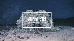 athens-photo-festival-2018-i-megali-giorti-fwtografias-sto-mouseio-mpenaki