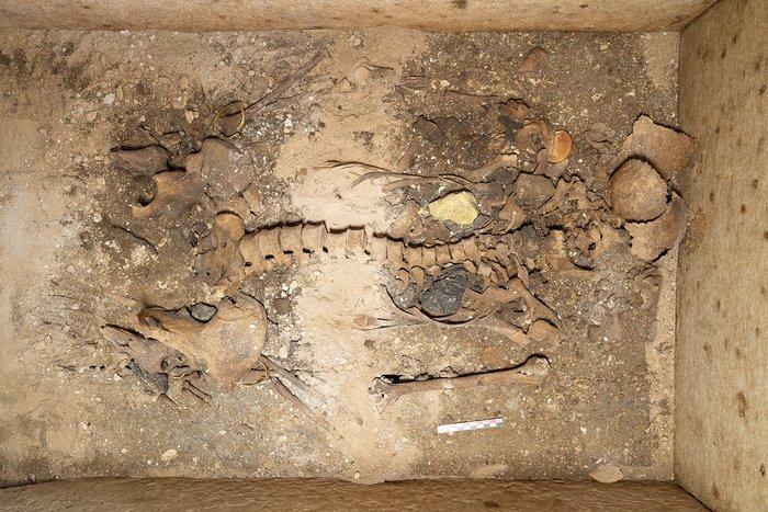 Ασύλητος τάφος επιφανούς γυναίκας ήρθε στο φως στη Σίκινο - εικόνα 3