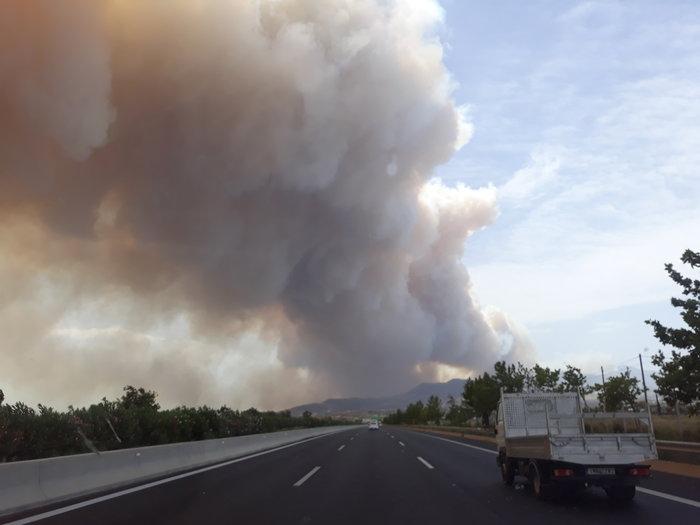 Μεγάλη φωτιά στην Κινέτα: Τέσσερα μέτωπα σε μήκος 6 χλμ - εικόνα 2