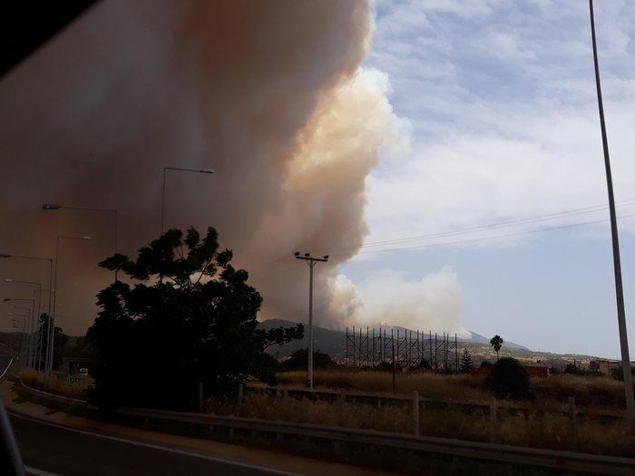 Μεγάλη φωτιά στην Κινέτα: Τέσσερα μέτωπα σε μήκος 6 χλμ - εικόνα 6