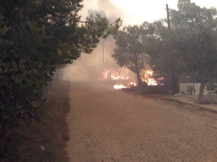 Μεγάλη φωτιά στην Κινέτα: Τέσσερα μέτωπα σε μήκος 6 χλμ
