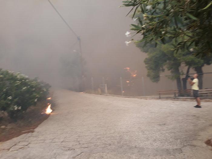 Μεγάλη φωτιά στην Κινέτα: Τέσσερα μέτωπα σε μήκος 6 χλμ - εικόνα 4