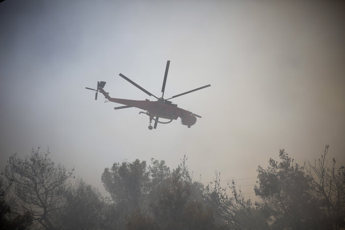 Μεγάλη φωτιά στην Κινέτα: Τέσσερα μέτωπα σε μήκος 6 χλμ - εικόνα 12