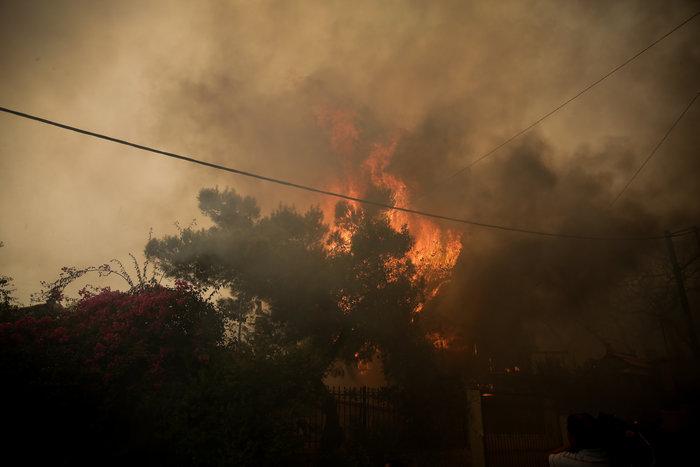 Μεγάλη φωτιά στην Κινέτα: Τέσσερα μέτωπα σε μήκος 6 χλμ - εικόνα 13