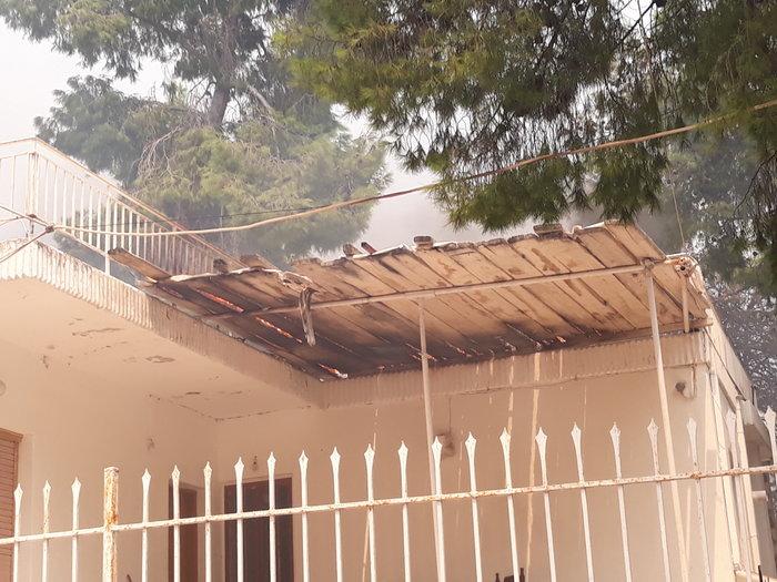 Μεγάλη φωτιά στην Κινέτα: Τέσσερα μέτωπα σε μήκος 6 χλμ - εικόνα 14
