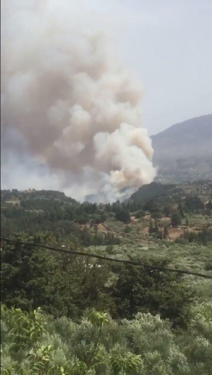 Ανεξέλεγκτη  φωτιά στα Χανιά, πνέουν δυνατοί άνεμοι ΕΙΚΟΝΕΣ - εικόνα 3